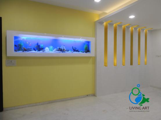 """""""wall fish tank in chennai"""""""