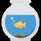 planted-aquarium-chennai